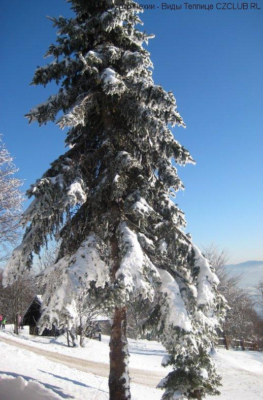 Природа в Чехии в горах