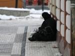 Бомжи в Чехии тоже не редкость