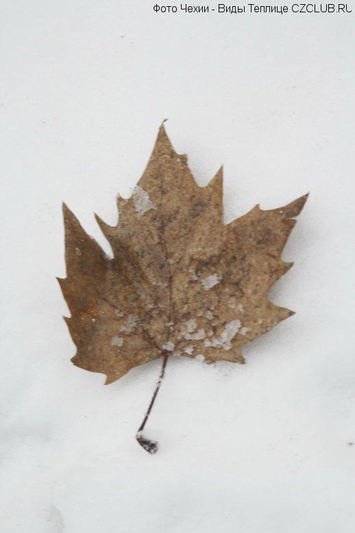 Зимние снимки Чехии
