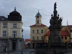 в Чехию на лечение