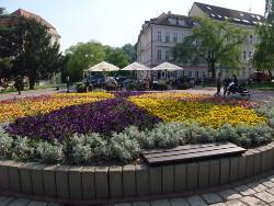 Санатории курорта Теплице расположены в центре города