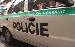Новости Чехии- полиция Чехии не против криминальных поступков